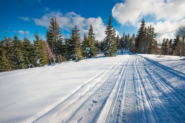 Atv and ski tracks in the snow on a sunny frosty winter day. concept of relaxation in the winter mountains in europe.