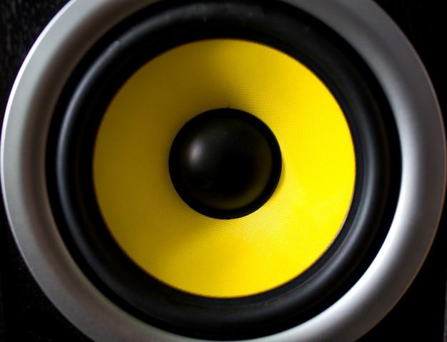 고립 된 오디오 스피커