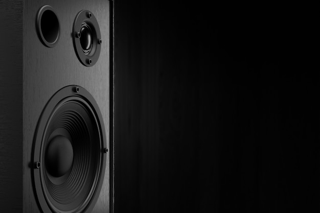 Audio speaker. the musical equipment. 3d rendering