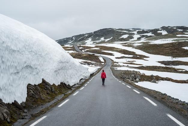 ノルウェー風光明媚なルートaurlandsfjellet