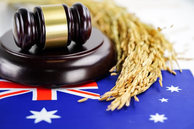 Australia flag and judge hammer with gold grain from agriculture farm