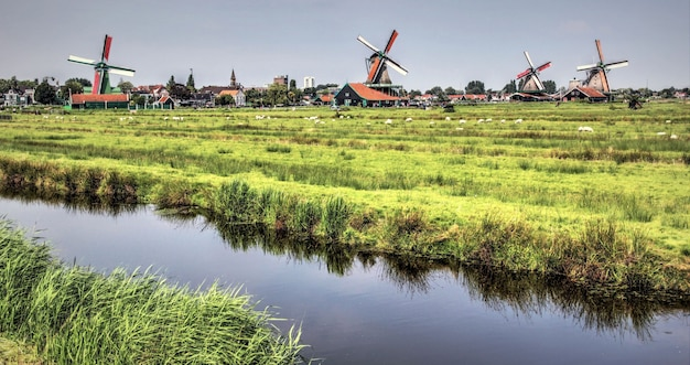 Authentic dutch landscape on a beautiful day