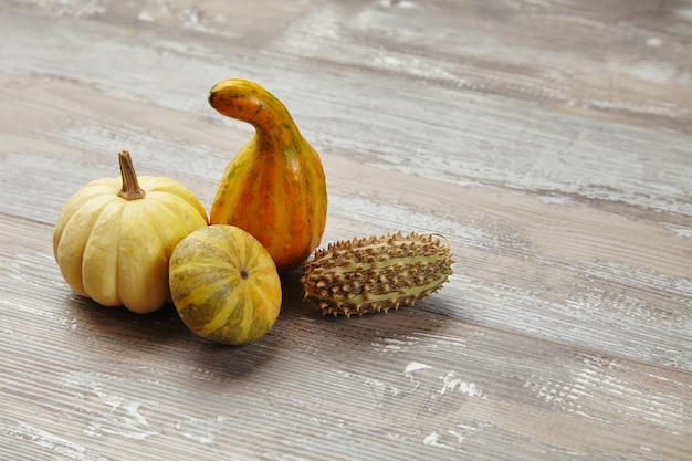 Authentic pumpkins on wooden table