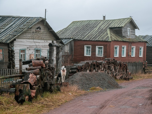 Аутентичный поселок на берегу кандалакшского залива белого моря