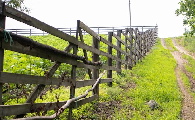 村の本物の木の柵。ボードで作られた手作りの木製柵。古い柵、田園風景。畑の柵に沿った人通りの多い小道。