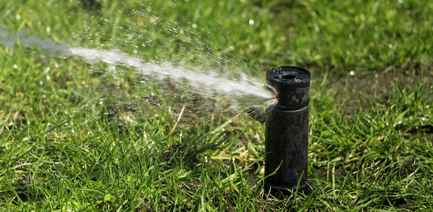 Automatic irrigation system. watering the lawn. lawn care.