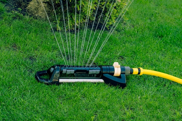 Automatic sprinkler on a green lawn