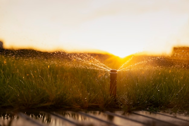 Automatic sprinkler system watering the lawn at sunset.