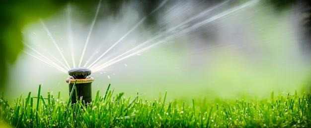 Автоматическая спринклерная система полива газона