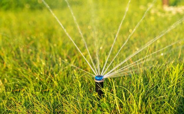 Автоматический дождеватель для полива зеленой лужайки в парке. система орошения.