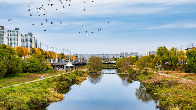 Красивый сезон autum города кванджу и реки на кванджу, южной корее.