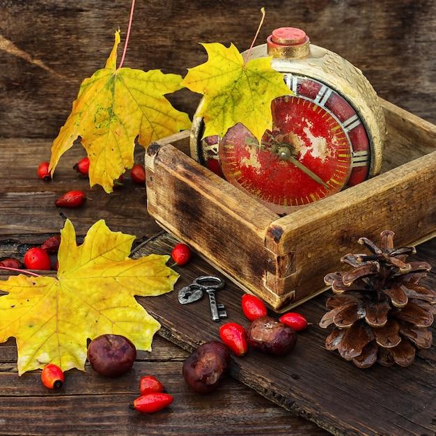Autumn alarm clock