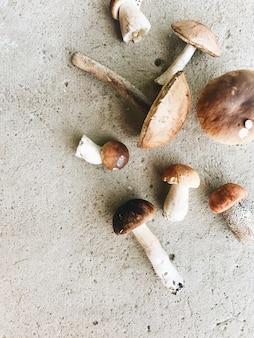 Осенне-осенняя композиция. красочные оранжевые грибы лежат на сером цементном полу