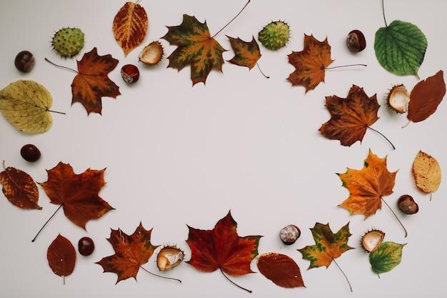 Осенний фон и рамка с засушенными листьями