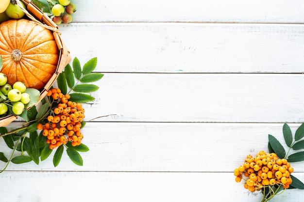 Осенний фон. яблоки, тыква, райские яблоки, рябина на белом фоне деревянных. сбор урожая. вид сверху. скопируйте пространство.