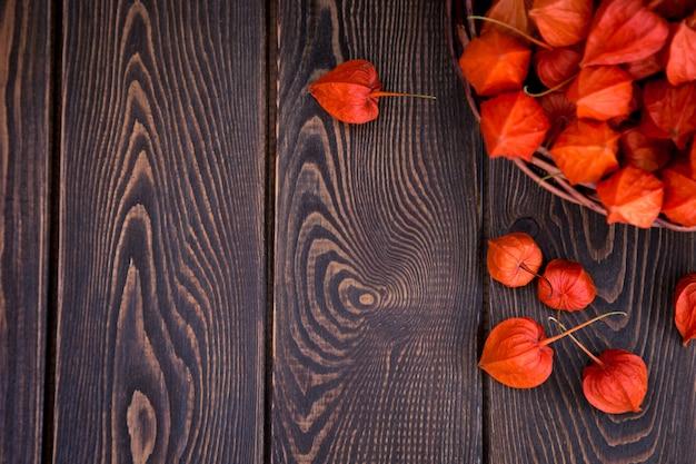 Осенний фон. яркие оранжевые ягоды физалиса на коричневой древесной предпосылке.