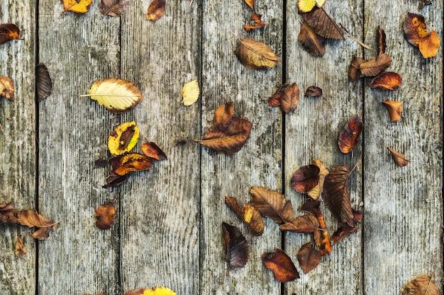 古い木製の背景の秋の背景組成物。苔木のテクスチャヴィンテージ背景を持つ納屋ボードに秋、紅葉。コピースペース、フラットレイアウト、トップビュー。