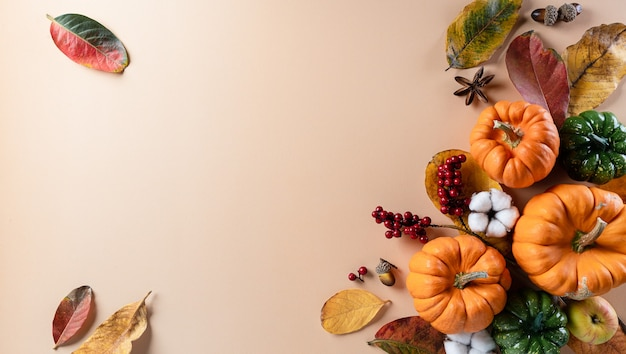 Autumn background decor from dry leaves and pumpkin with copy space