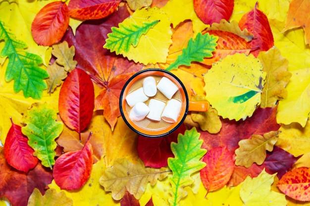 Осенний фон из красных, желтых и зеленых листьев и чашки какао. плоская планировка, копия пространства.