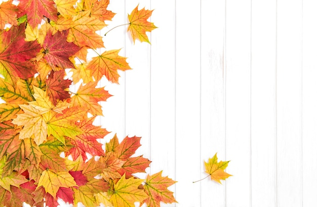Autumn background maple leaves wooden texture