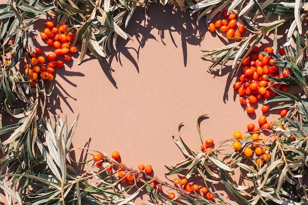 シーバックソーン秋の収穫抗酸化ビタミンの葉とオレンジ色の果実の秋の背景