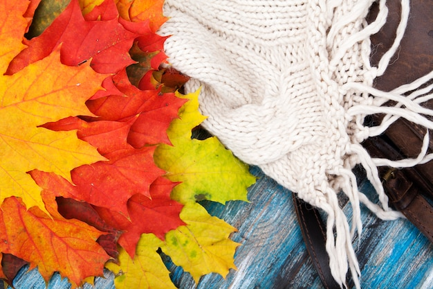 단풍 잎, 스웨터와 가방의가 배경