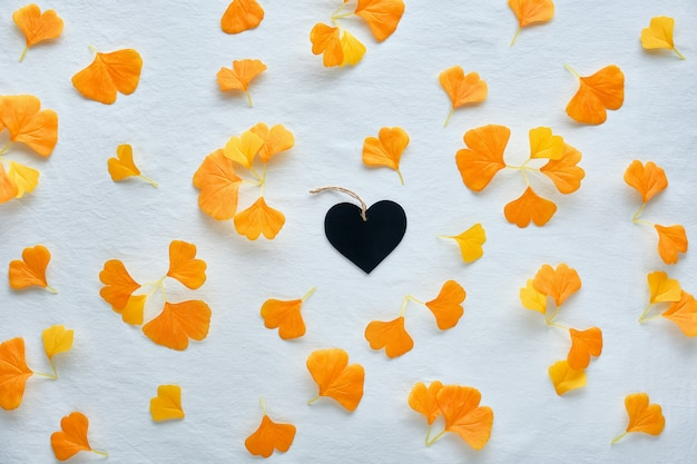 Autumn background in orange and brown. silk orange ginkgo leaves on white textile background. black wooden heart in the middle.