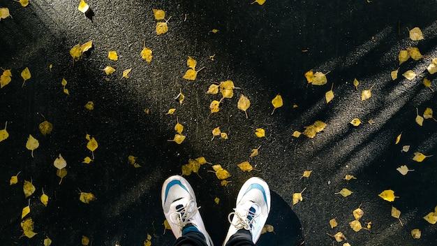 Осенний фон вид сверху. человек стоит на мокром асфальте, покрытом опавшими желтыми листьями, pov