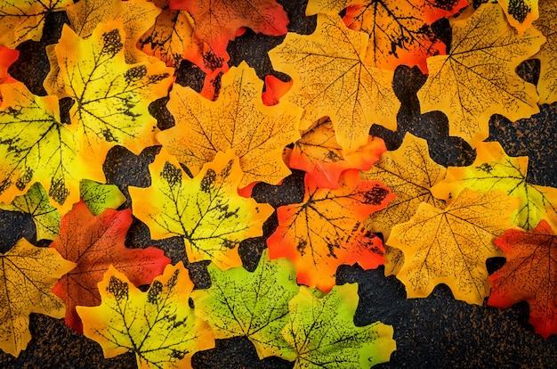 Осенний фон с цветными декоративными листьями
