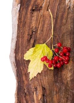木の板に色の葉と秋の背景。