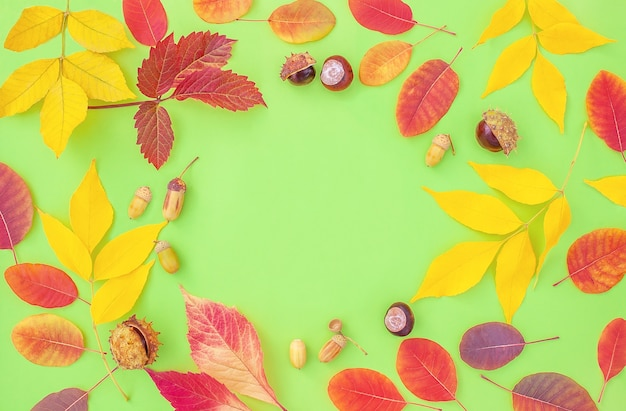 Autumn background with frame in the center