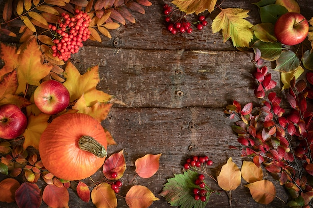 Autumn background with frame of pumpkin, apples, rowan and hawthorn berries and leaves on tree bark background.