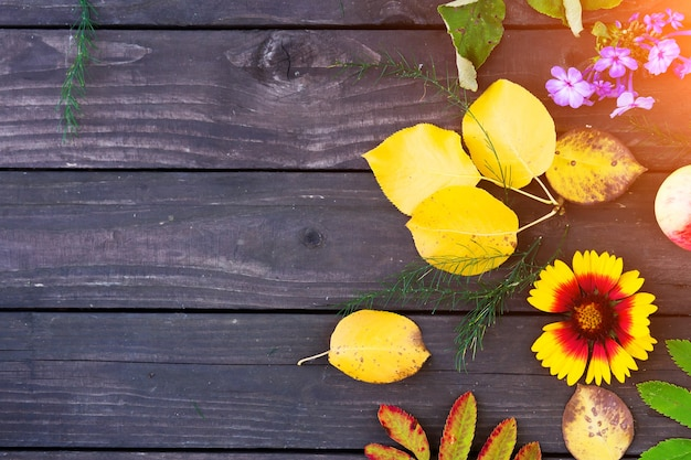 Осенний фон с листьями и цветами на коричневом деревянном фоне
