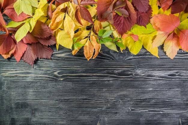 木の板の葉と秋の背景