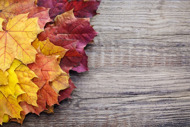 Autumn background with leaves on wooden background