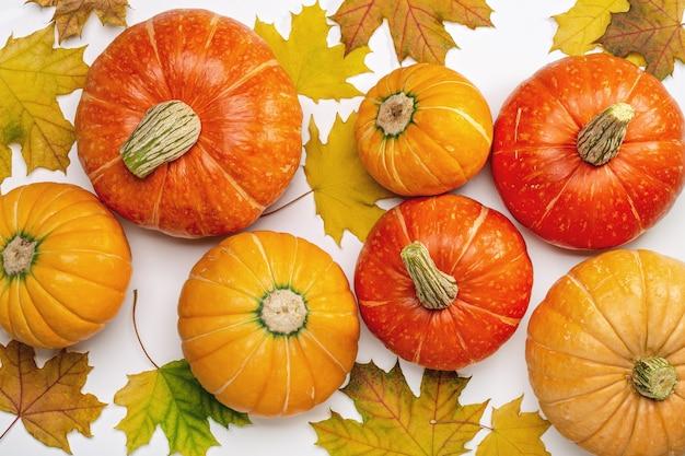 Осенний фон с кленовыми листьями и спелыми тыквами. макет для сезонных предложений и праздничных открыток, вид сверху.