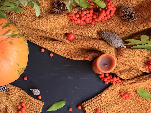 カボチャのリンゴの暖かいセーターのナナカマドと松ぼっくりの秋の背景コピースペースのフレーム