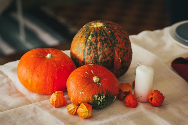 Autumn background with pumpkin close up on table