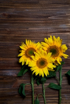 Autumn background with sunflowers