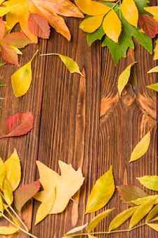 Autumn banner with colorful tree leaves on brown wood