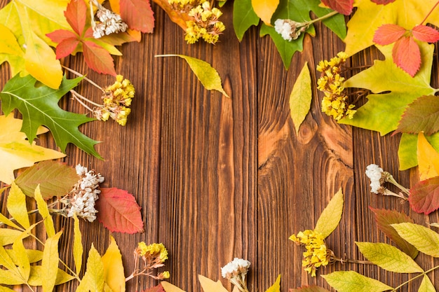 Autumn banner with colorful tree leaves and dry flowers on brown wood