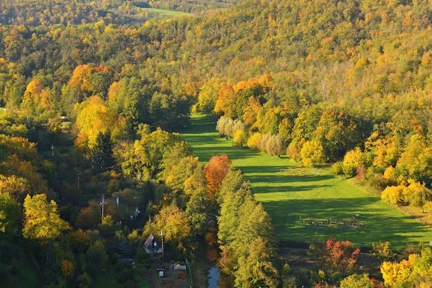 秋。秋の木々の上に美しいカラフルな葉。自然の季節の色の背景。