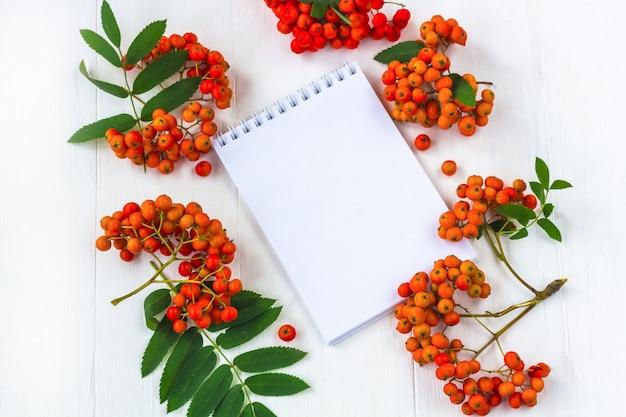 Композиция из осенних ягод. тетрадь с рябиной пука на белой деревянной деревенской таблице.
