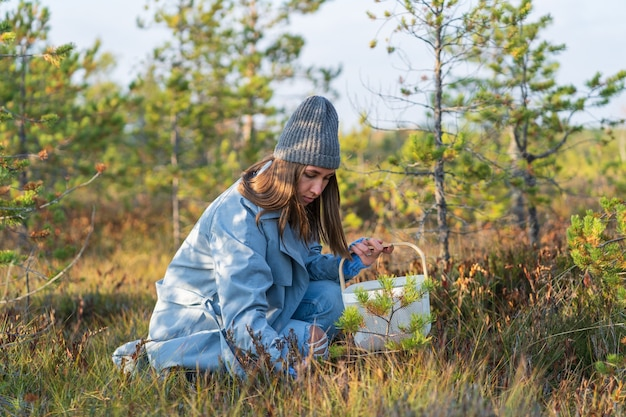 익은 크랜베리를 찾는 늪에서 젊은 여성을 따는 가을 열매는 도시 밖에서 주말을 보낸다