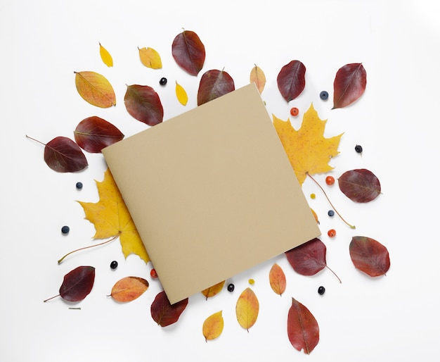 Autumn border. creative composition of vibrant red and yellow leaves and card