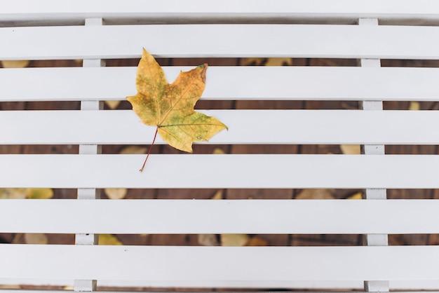 ヴィンテージの白い素朴な木の背景の葉と秋の境界線。コピー、テキスト、レタリングのための空のスペース。秋のカエデの葉の背景。上面図