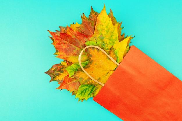 Осенний букет из сухих кленовых листьев в красном бумажном пакете на синем