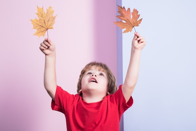 Autumn boy playing with maple leaves little kid holds maple leaf yellow maple leaf boy childhood