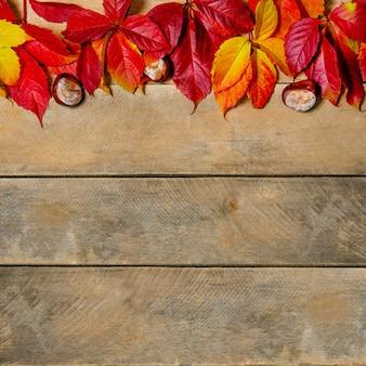 Осенние яркие желто-красные листья на деревянном фоне. с копией пространства. композиция из каштанов и листьев девичьего винограда на натуральном столе из досок. вид сверху. flatlay.