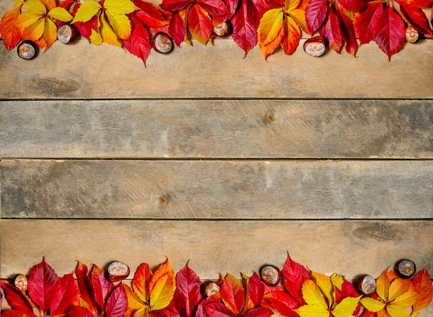 木製の秋の明るい黄赤色の葉